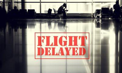 DOCUMENT. Zborurile spre și dinspre Marea Britanie au fost suspendate 14 zile