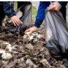 Selectarea colectivă a gunoaielor nu se face în România doar 10%. Aceasta poate dăuna sănătății populației